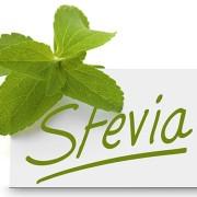 steviaweb