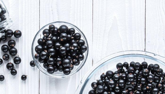 grosella negra fruta para el corazon