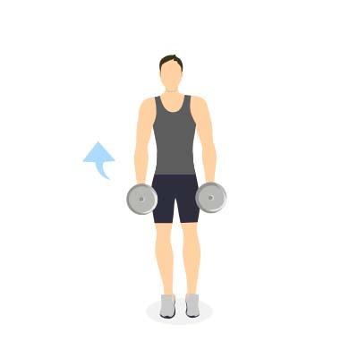 ponerse en forma en casa biceps