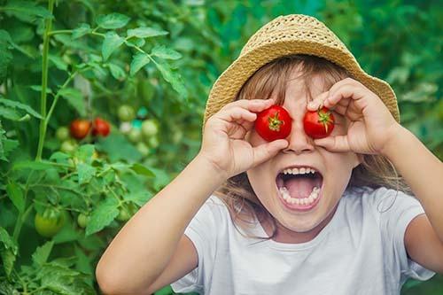 alimentacion infantil de 6 a 12 años